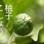 「柚子こしょう」と「かんずり」違いを解説!